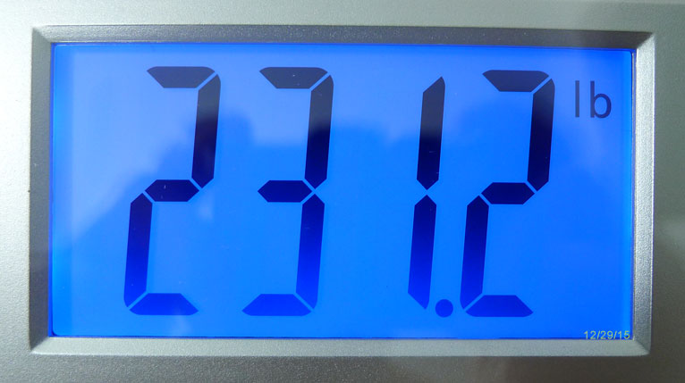 Weight Progress 12-28-15 - 231.2 Pounds
